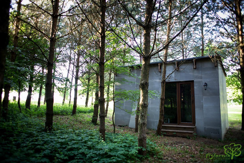 Domek w lesie.