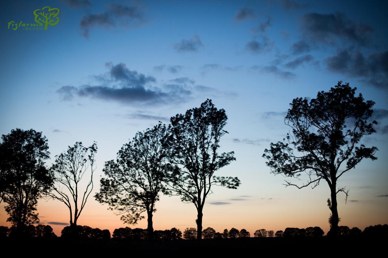 Zachód słońca nad Figlarnią.